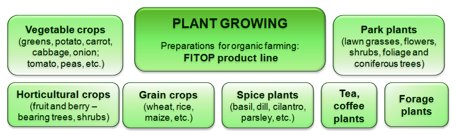 Probiotic for plants Fitop use: vegetable crops, park plants, horticultural crops, grain crops, spice plants, forage plants, tea and coffee plants