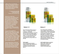Veterinary probiotics Vetom 1.1 and Vetom 2 for the treatment of viral infections, dysbacteriosis, dysbiotic state, etc.