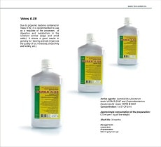 Veterinary preparation Veles 6.59 as a regulator of the processes of digestion and metabolism in the cattle